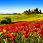 ИТАЛИЯ- Тоскана - на полупансион