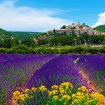 ФРАНЦИЯ- ПРОВАНС- по пътя на римляните и хубавото вино