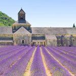 ФРАНЦИЯ- Прованс- магическата земя!🚌