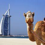 Дубай - град приказка, град мечта!