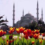 Истанбул- Фестивал на лалето
