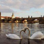 Септемврийски празници в Прага, 20-23 септември