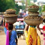 Индия-Златният триъгълник, Шри Ланка и Малдиви