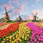 Денят на Краля в приказна Холандия! Ранно записване- 28.12.2018✈