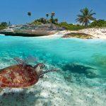 МЕКСИКО- Карибски приключения в Ривиера Мая- ☀️Почивки 2021
