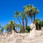 ПЕРЛИТЕ НА ЕГИПЕТ- Кайро и Хургада+ Екскурзии на Египетския музей и Пирамидите