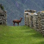 БОЛИВИЯ и ПЕРУ- пътешествие в земите на инките!